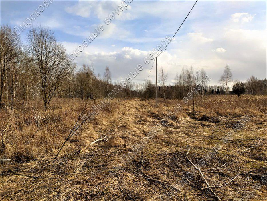 Участок: село Ямкино (фото 2)