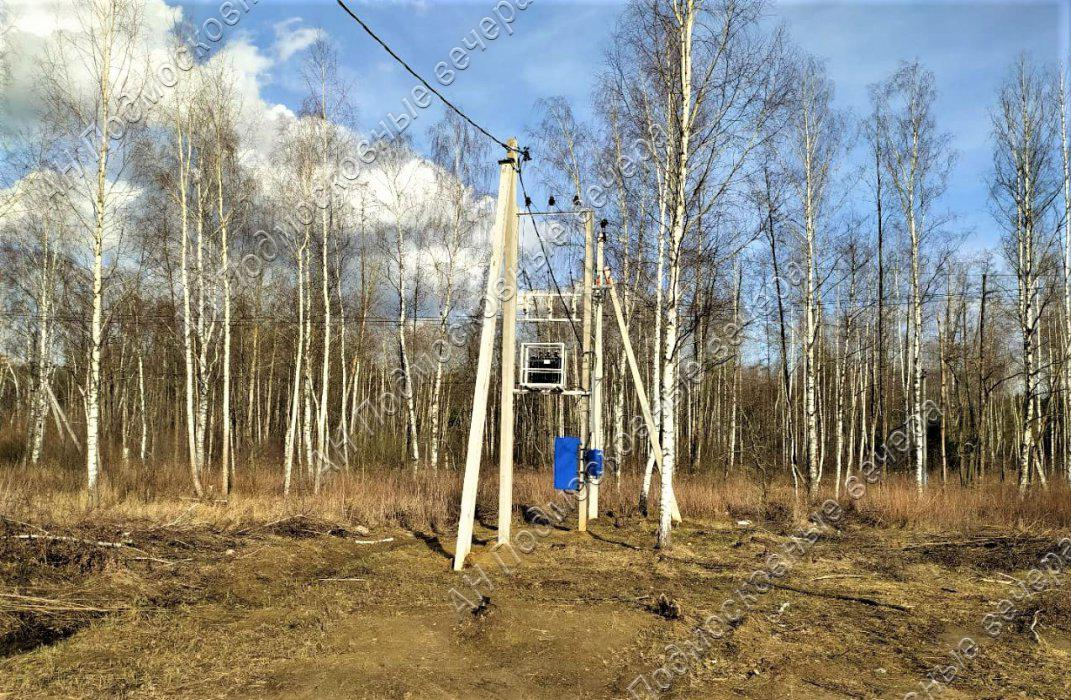 Участок: село Ямкино (фото 4)