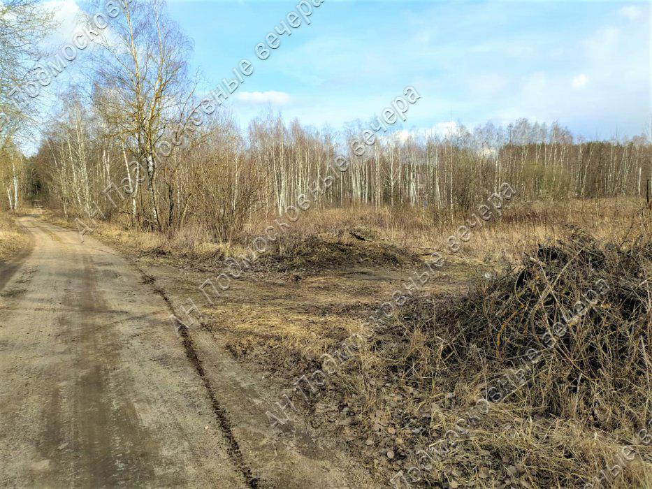 Участок: село Ямкино (фото 5)