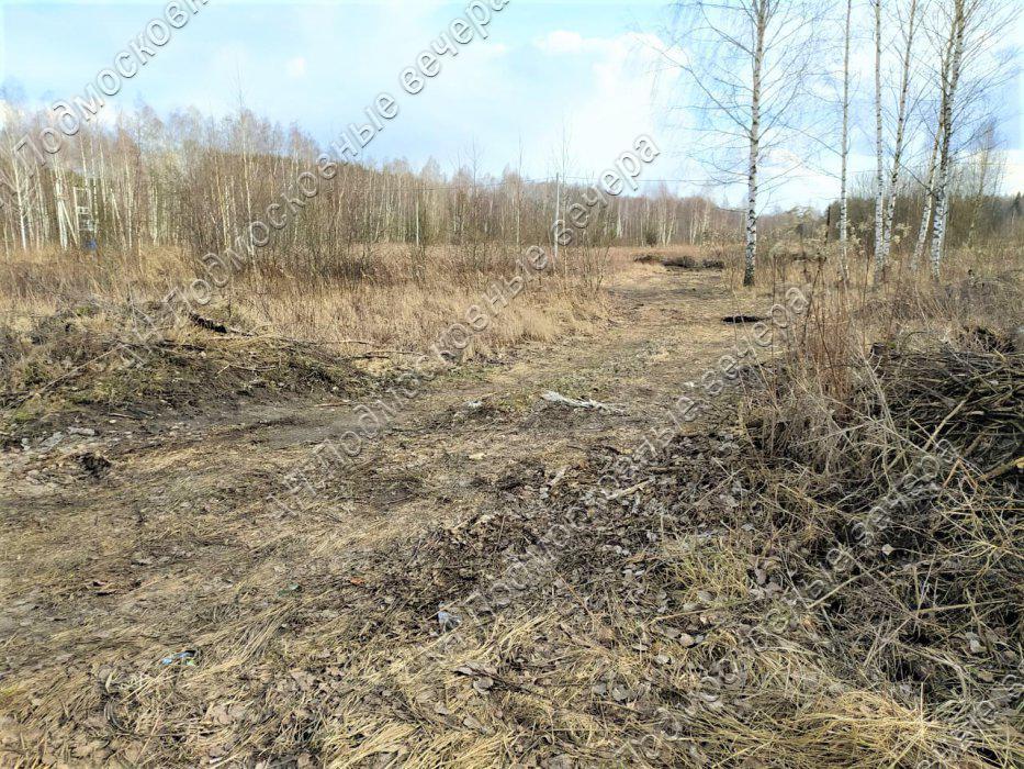 Участок: село Ямкино (фото 6)