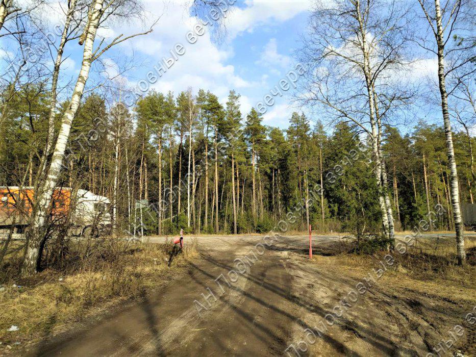 Участок: село Ямкино (фото 9)