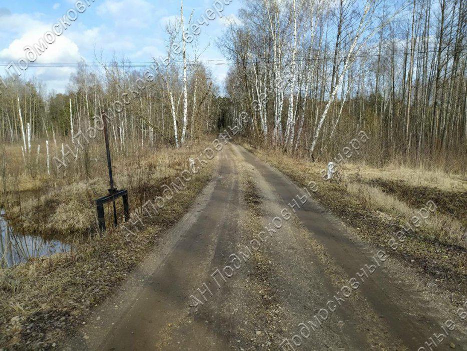 Участок: село Ямкино (фото 10)