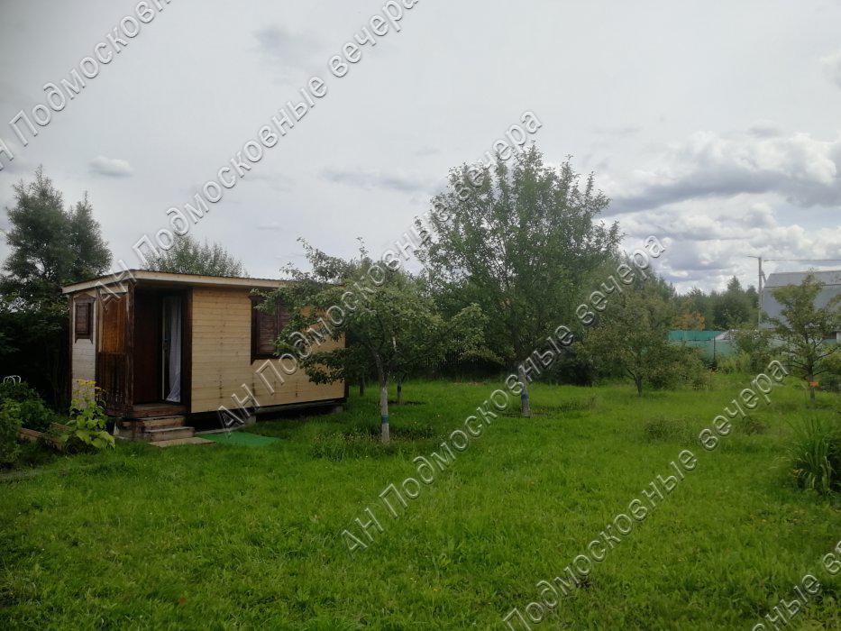 Участок: село Дмитровское (фото 4)