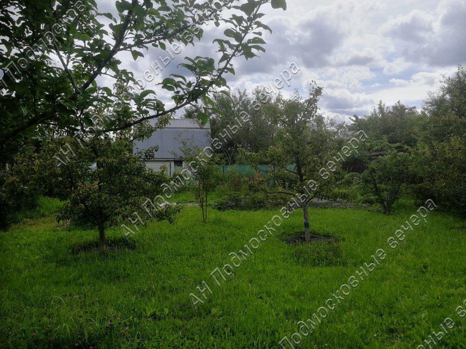 Участок: село Дмитровское (фото 9)