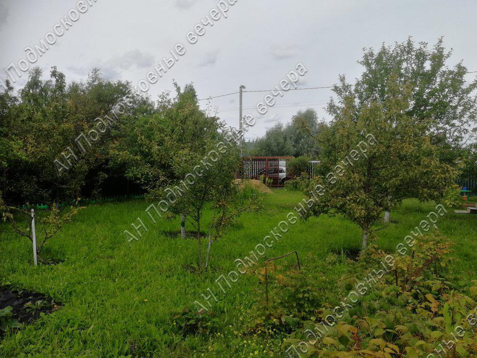 Участок: село Дмитровское (фото 10)