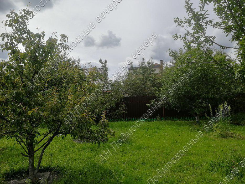 Участок: село Дмитровское (фото 14)