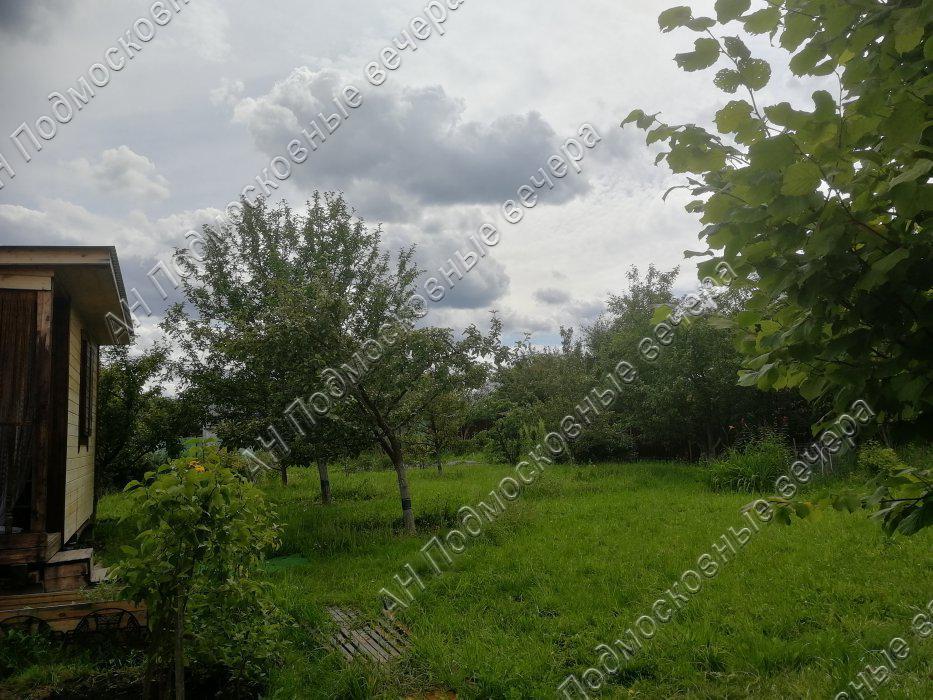 Участок: село Дмитровское (фото 17)