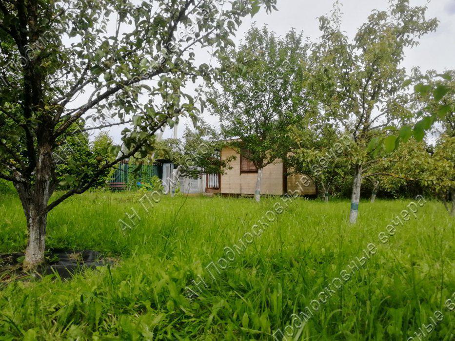 Участок: село Дмитровское (фото 19)