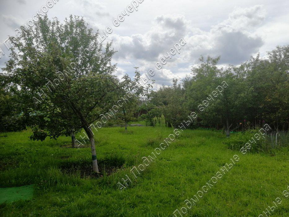 Участок: село Дмитровское (фото 20)
