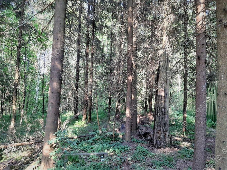 участок -  Иславское, Одинцовский р-н