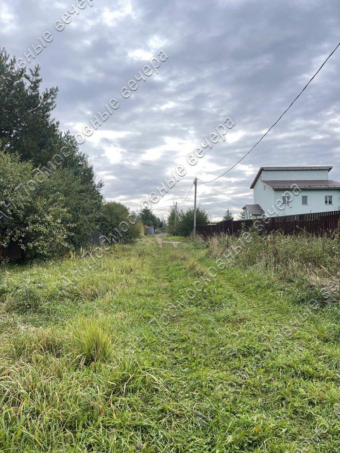 Участок: село Перхушково (фото 5)
