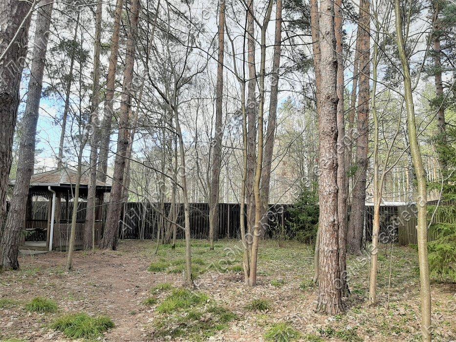 Дача: Павловская Слобода (фото 20)